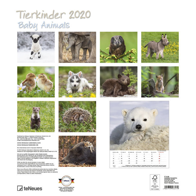 Calendrier Animaux.Calendrier Mural 2020 Bebe Animaux