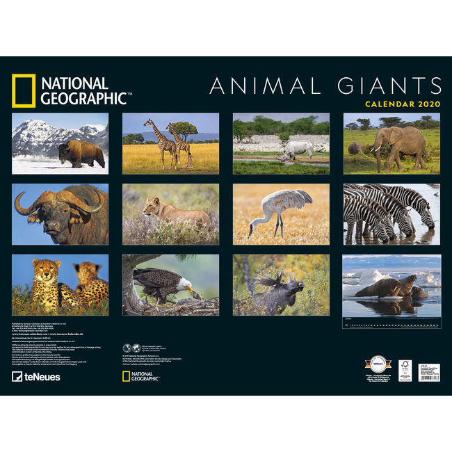 Calendrier National 2020.Maxi Calendrier Poster 2020 Animaux Geants Par National Geograhic