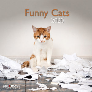 Calendrier 2020 Chats funny avec poster offert