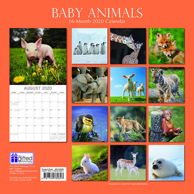 Calendrier Bebe.Calendrier 2020 Bebe Animaux