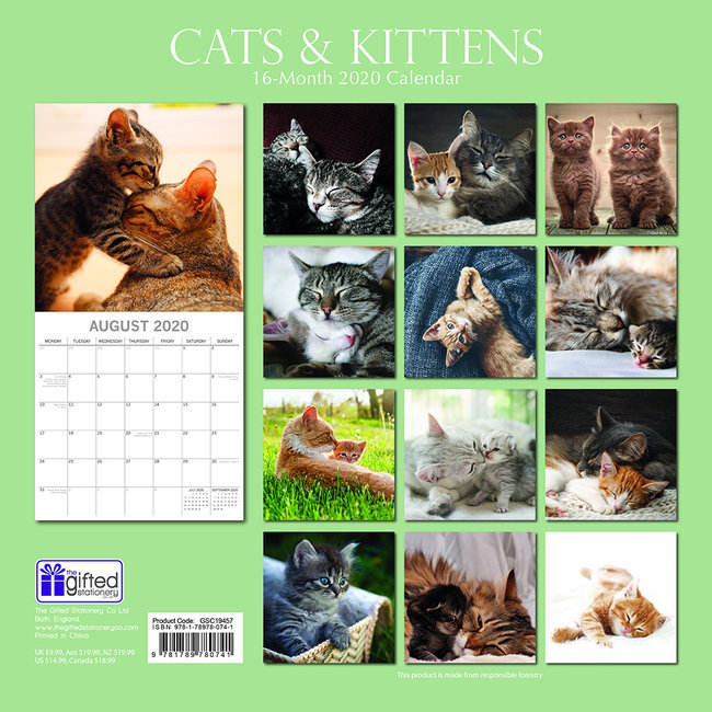 Calendrier Chat 2020.Calendrier 2020 Chat Et Chaton