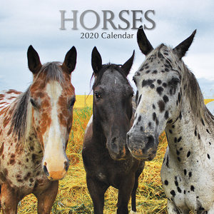 Calendrier 2020 Chevaux