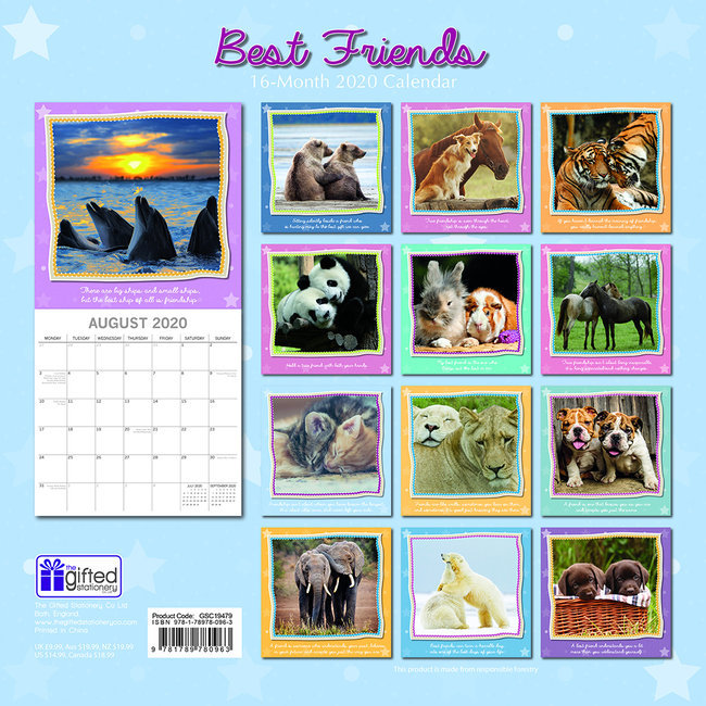 Calendrier 2020 Animaux.Calendrier 2020 Animaux Meilleurs Amis