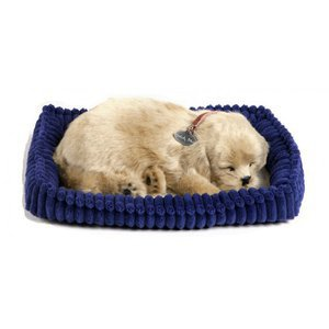 Peluche vivante qui respire Golden retriever - Perfect petzzz