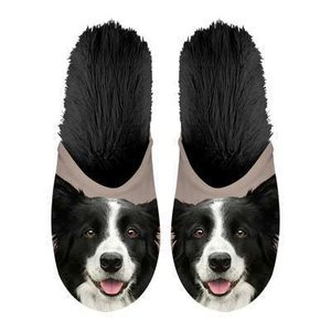 Chaussons Border collie