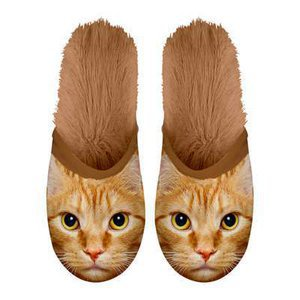 Chaussons Chat roux