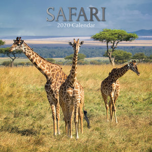 Calendrier 2020 Safari