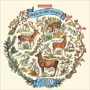 Calendrier 2020 Dessin Animaux forêt - Emma Bridgewater