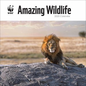 Calendrier 2020 Animaux Sauvage étonnant - WWF