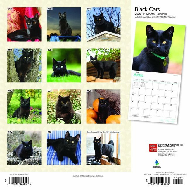 Calendrier Chat 2020.Calendrier 2020 Chats Noirs
