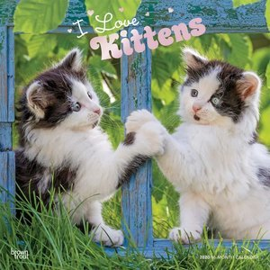 Calendrier 2020 J'aime les Chatons