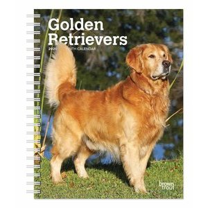 Agenda Golden retriever 2020