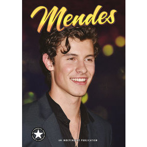Calendrier 2020 Shawn Mendes A3