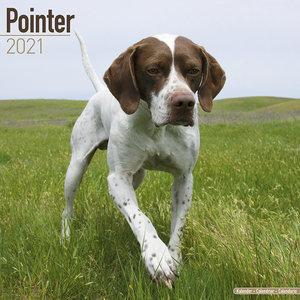 Calendrier 2021 Pointer