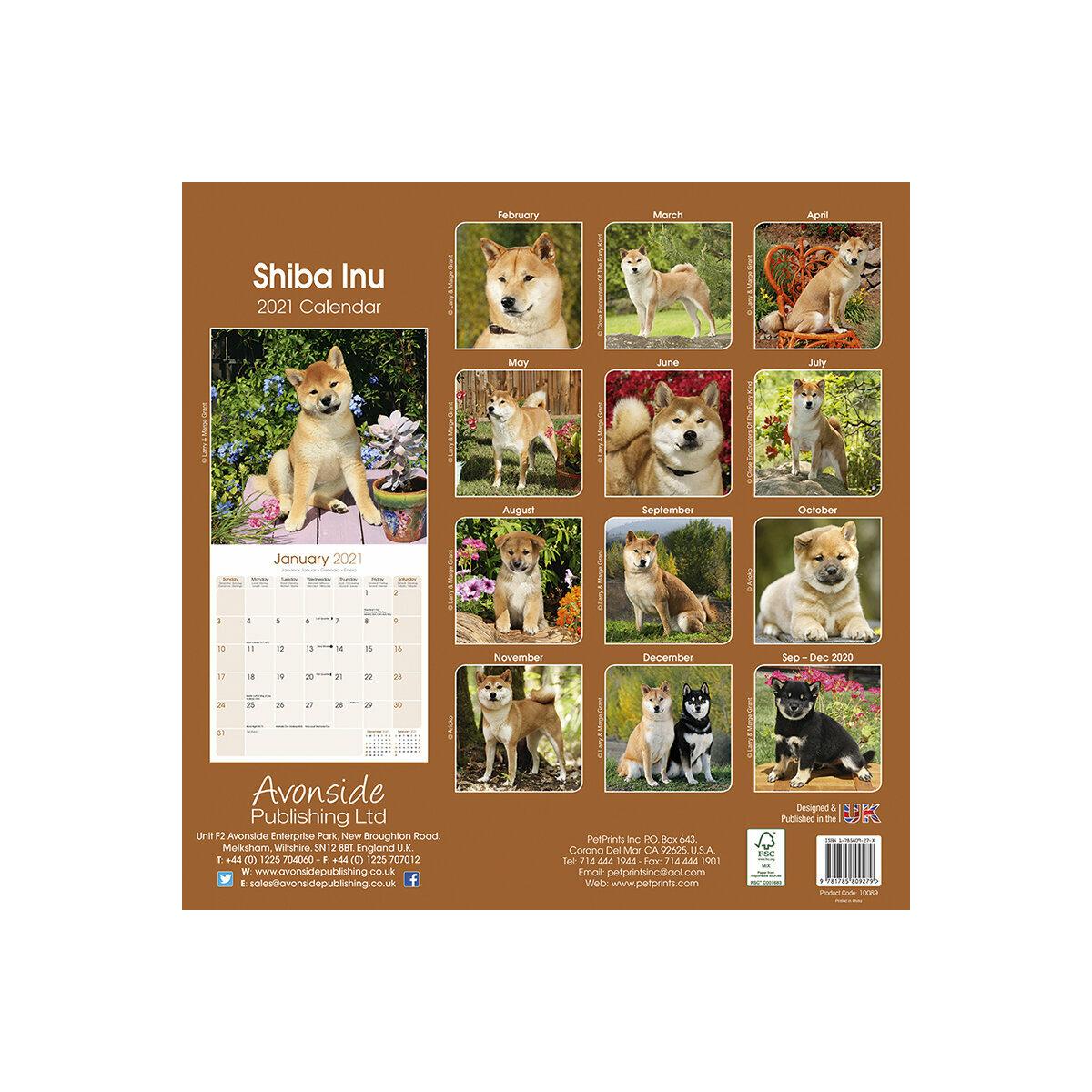 calendrier Shiba inu 2021