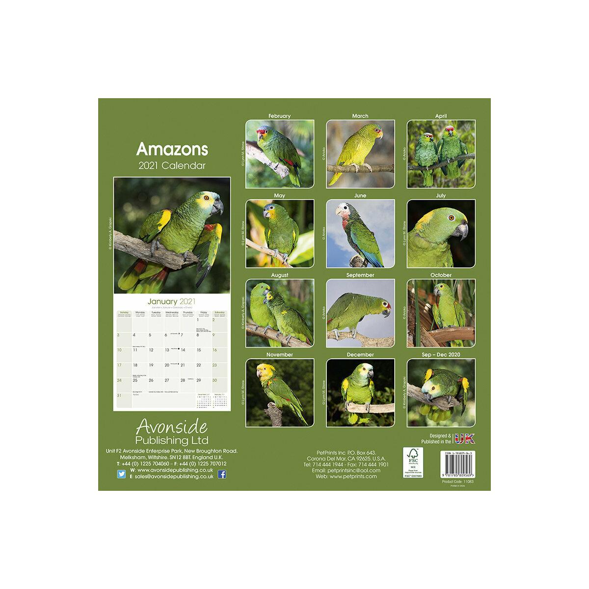 calendrier Amazone Perroquet 2021