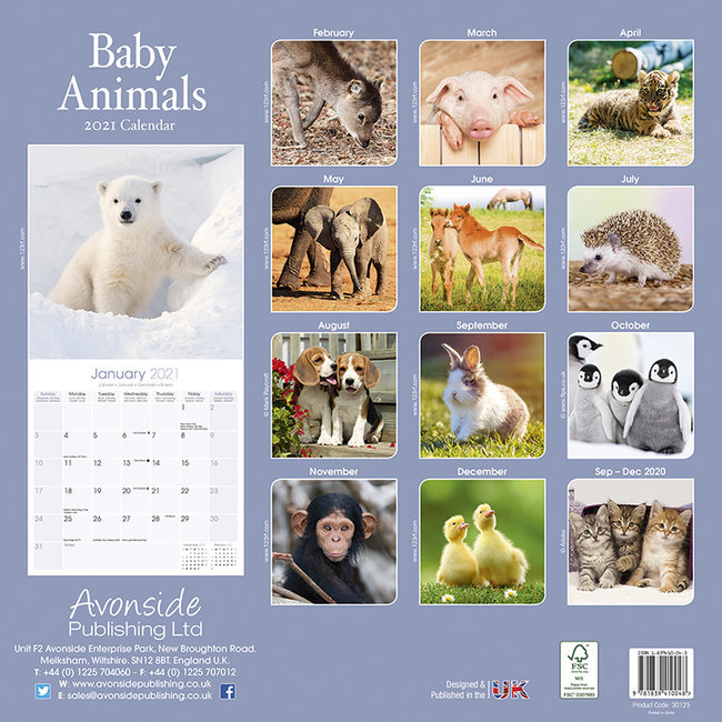 Calendrier 2021 Animaux Calendrier 2021 Bebes animaux