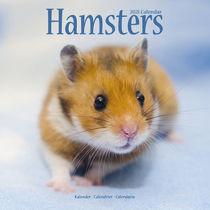 Calendrier 2021 Hamster