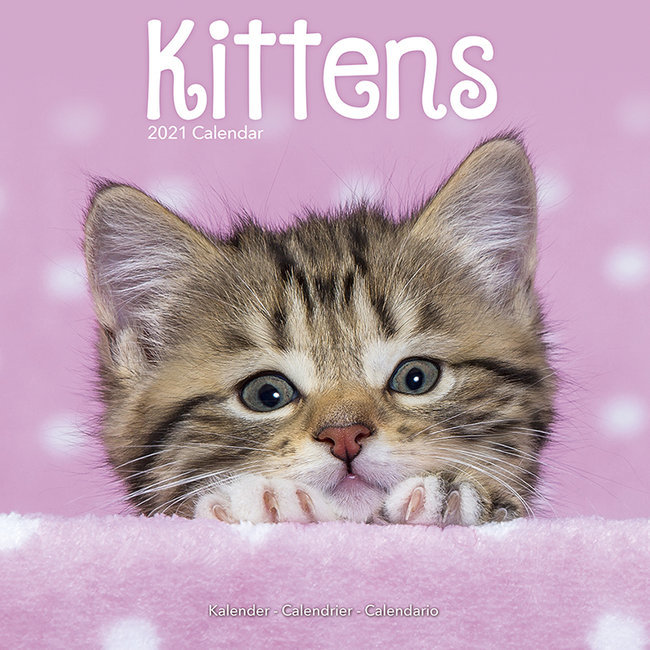 Calendrier 2021 Chatons