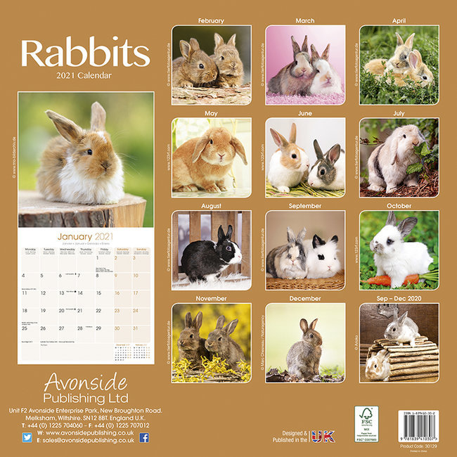 Calendrier 2021 Lapin