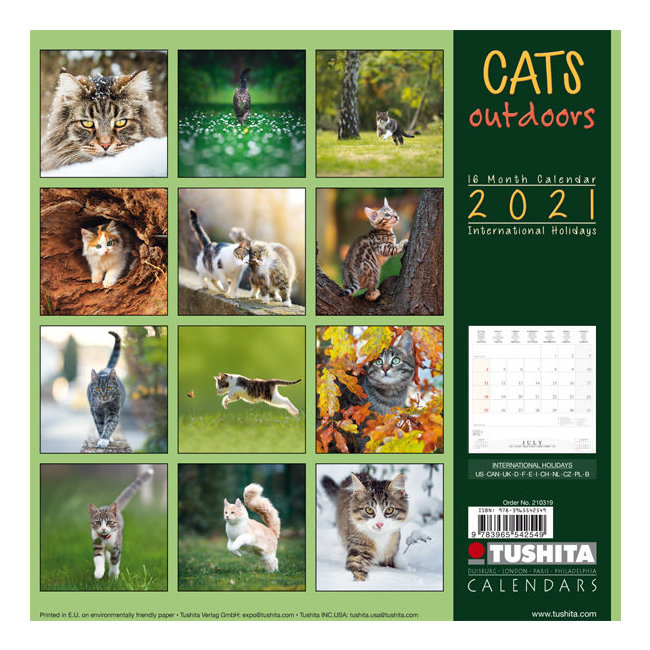 Calendrier 2021 Chat nature