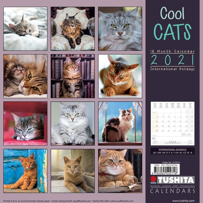 Calendrier 2021 Chat Calendrier 2021 Chat cool