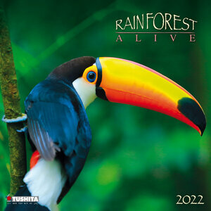 Calendrier 2021 Animaux forêt tropicale