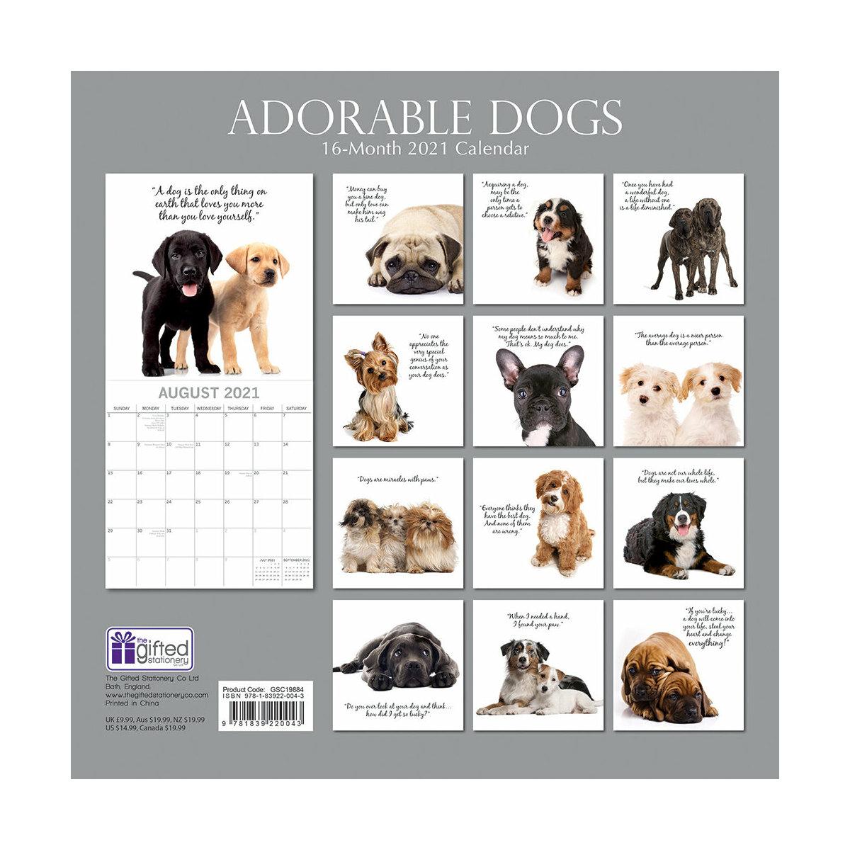 Calendrier 2021 Adorable chien