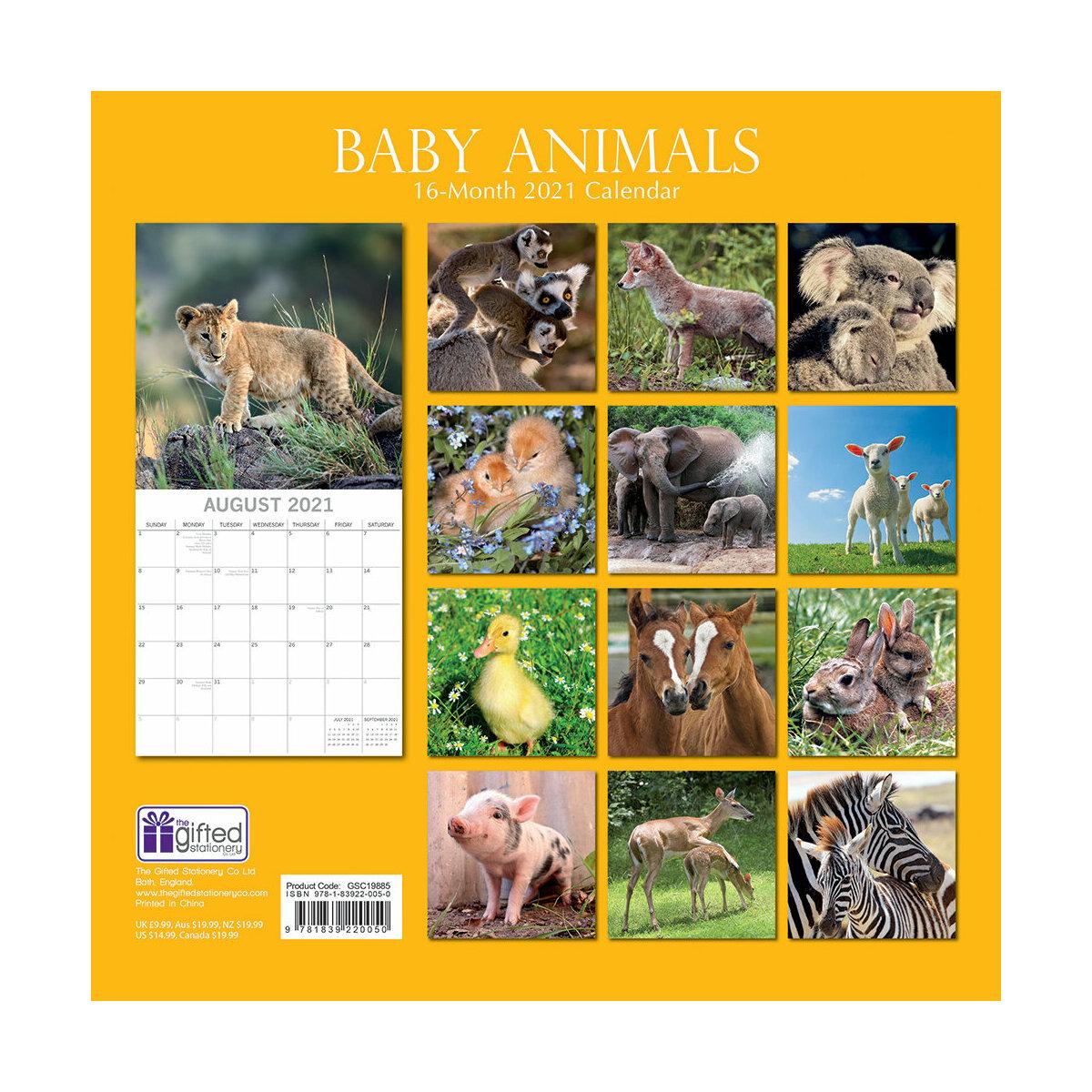 Calendrier 2021 Animaux Calendrier 2021 Bébé animaux