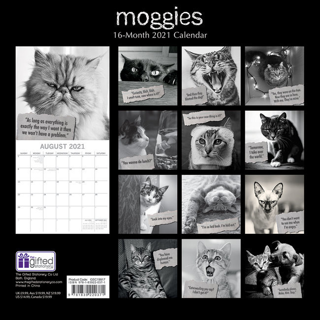 Calendrier 2021 Humour Calendrier 2021 Humour de chat