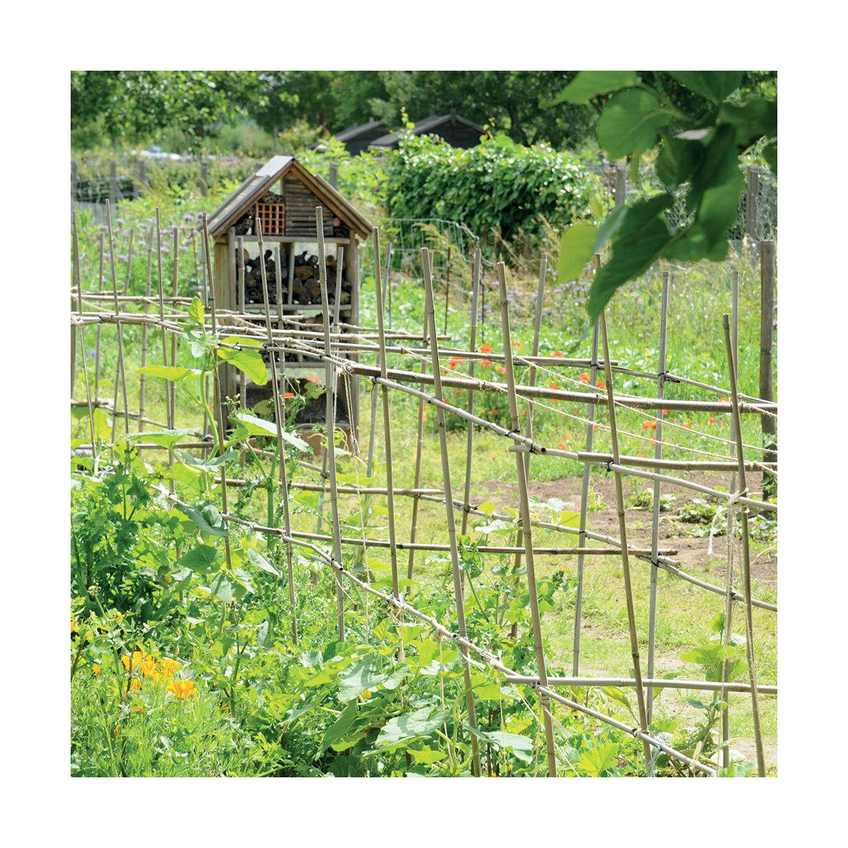 Calendrier Du Jardinier 2021 calendrier Potager 2021