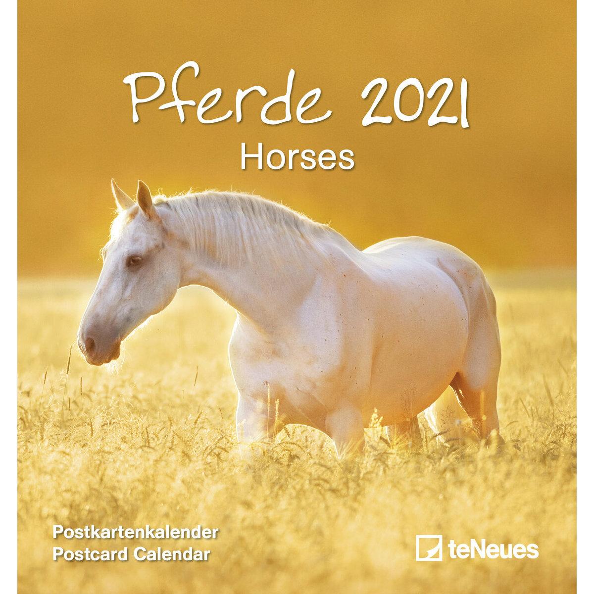 Calendrier 2021 carte postale détachable Chevaux