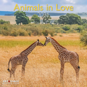 Calendrier 2021 Animaux amoureux avec poster offert