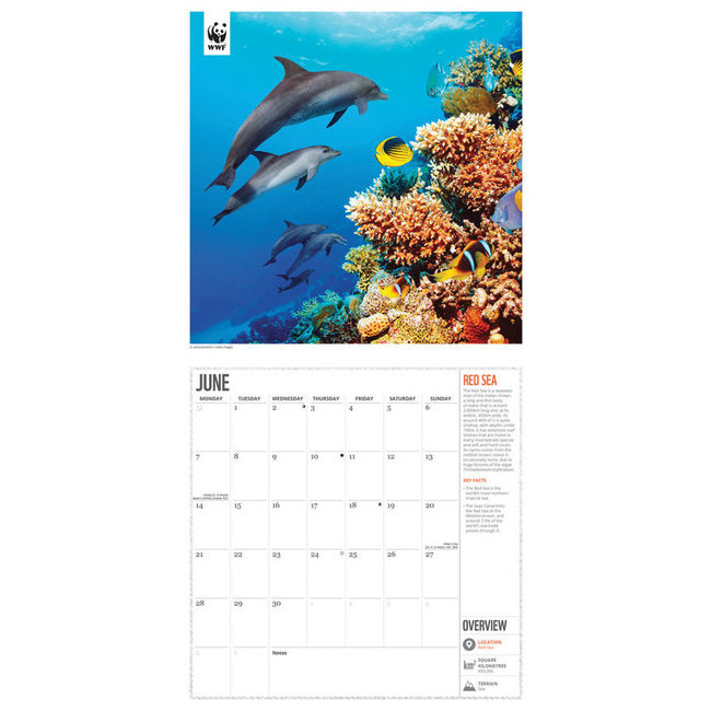 Calendrier 2021 Protection de la nature WWF