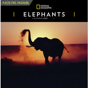 Calendrier 2021 Elephant National Geographic