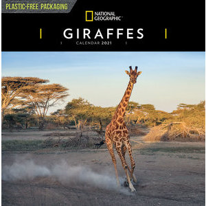 Calendrier 2021 Girafe National Geographic