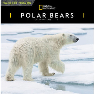 Calendrier 2021 Ours polaire National Geographic