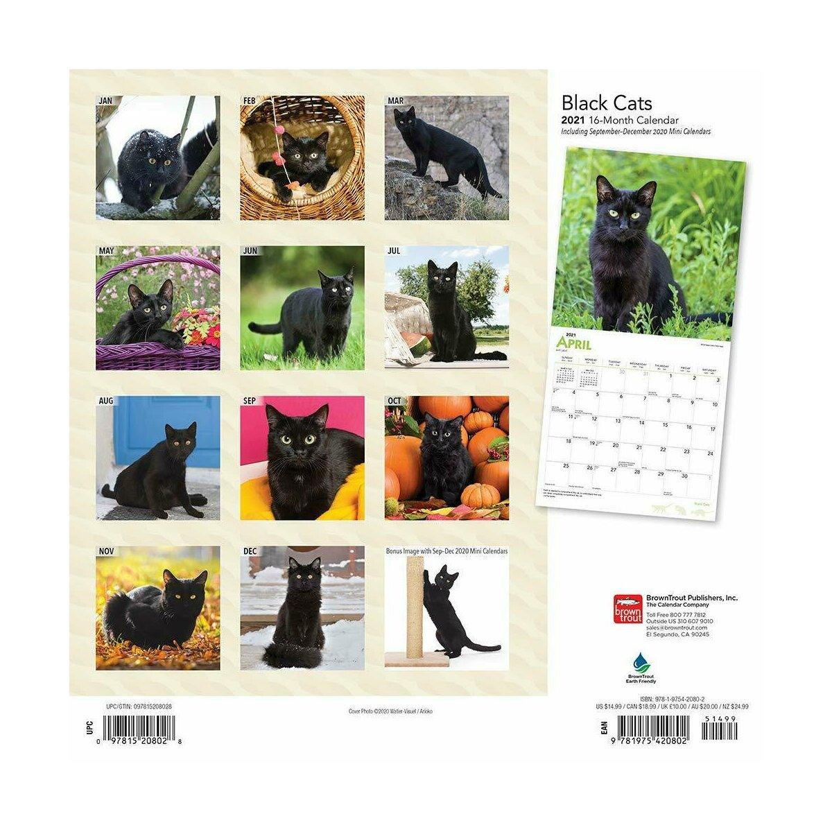 calendrier chat noir 2021