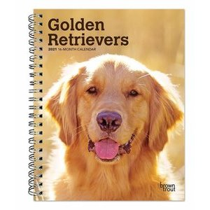 Agenda Golden retriever 2021