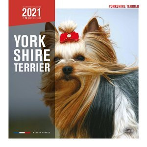 Calendrier 2021 Yorkshire Terrier