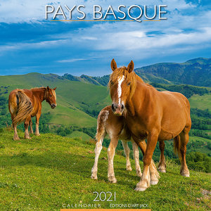 Calendrier 2021 Pays basque chevaux
