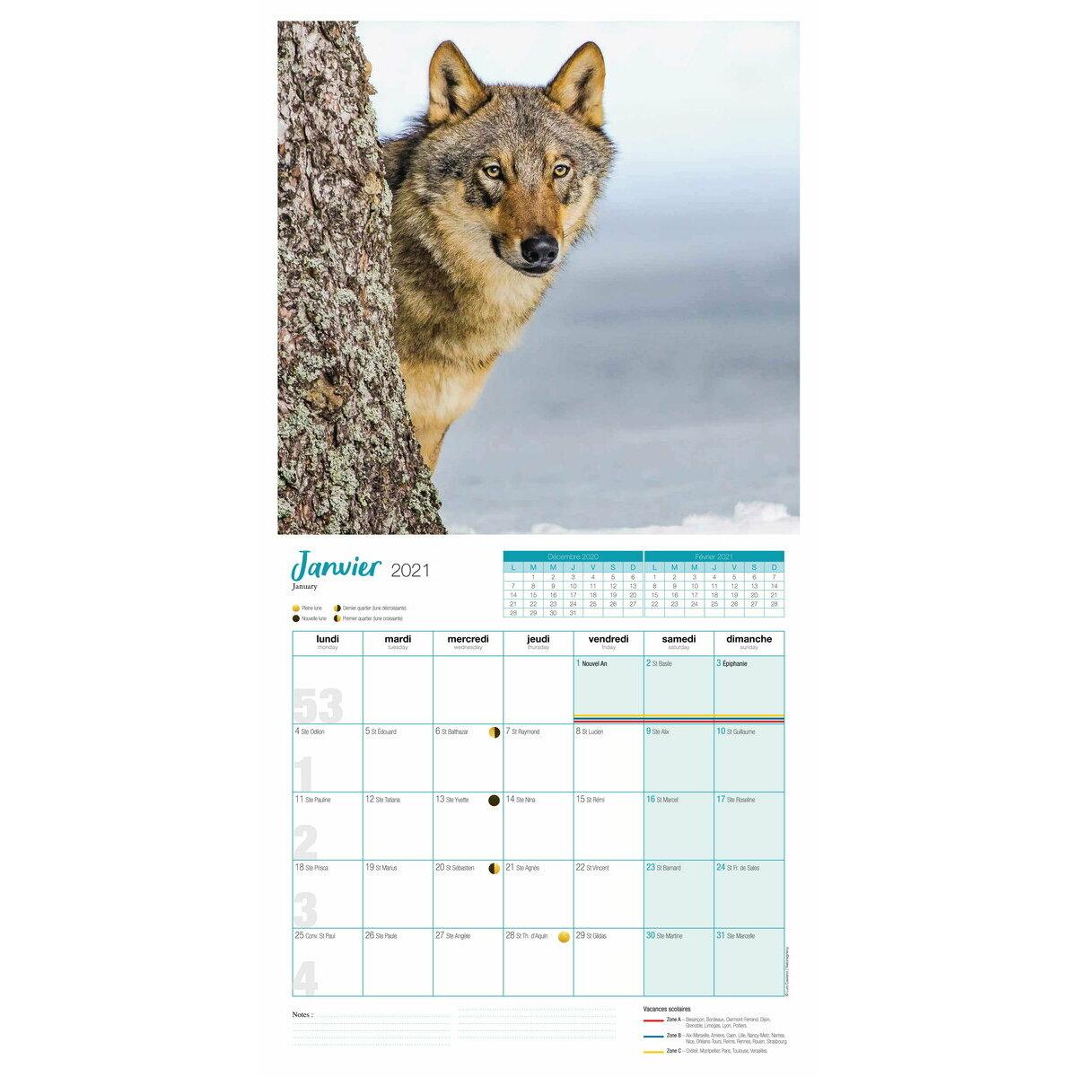 Calendrier 2021 Loup