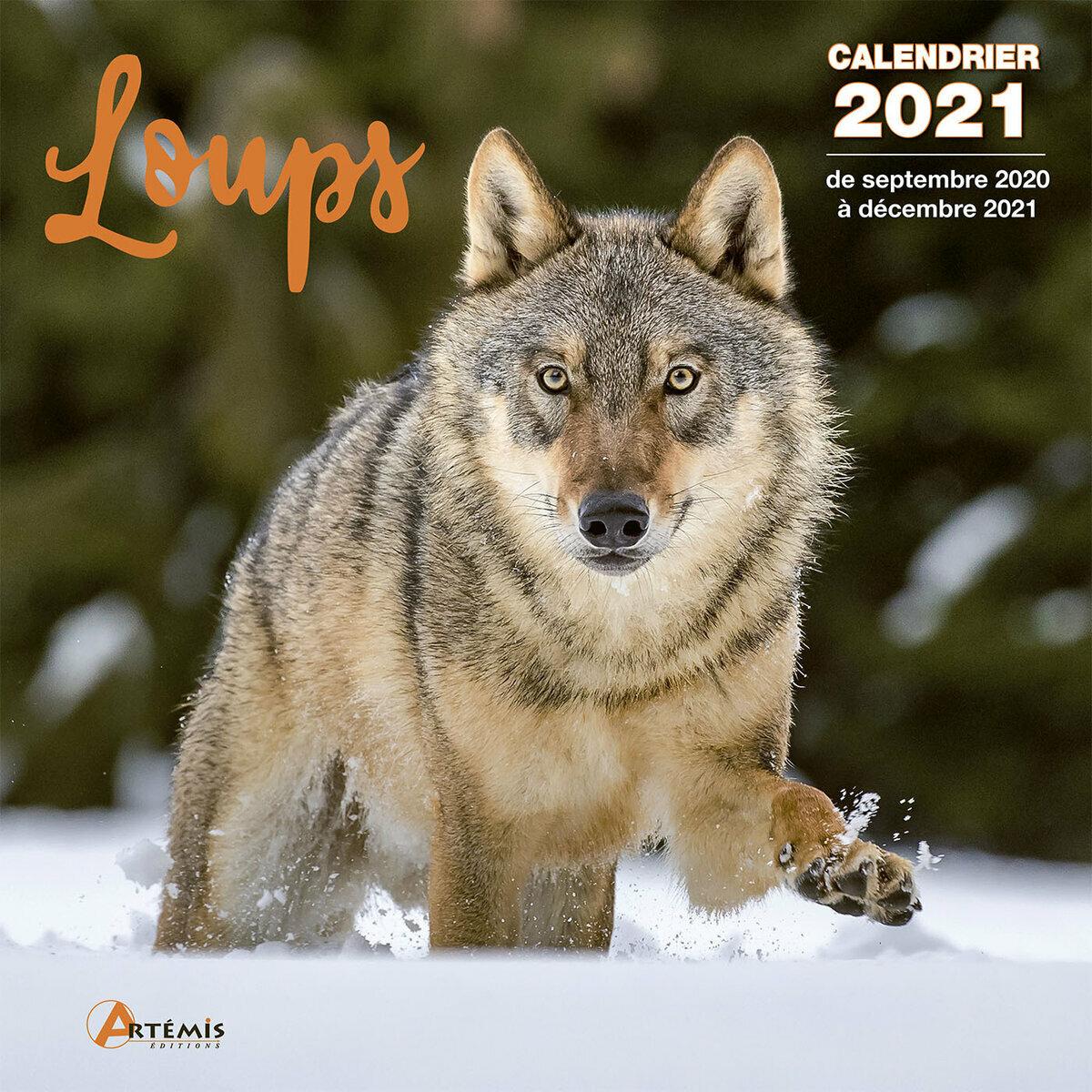 Calendrier Loup 2021 Calendrier 2021 Loup