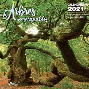 Calendrier 2021 Arbre remarquable