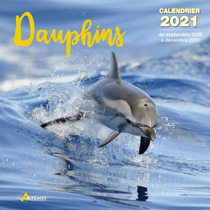 Calendrier 2021 Dauphin