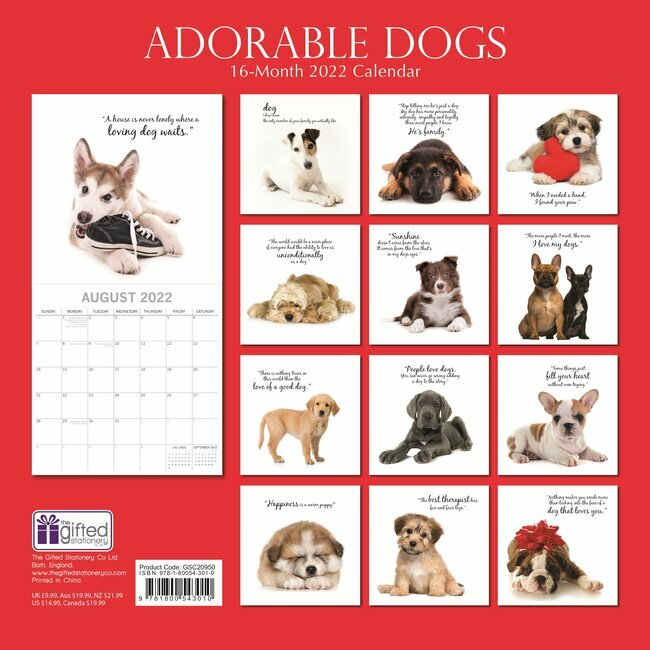 Calendrier Animaux 2022 Calendrier 2022 Adorable chien