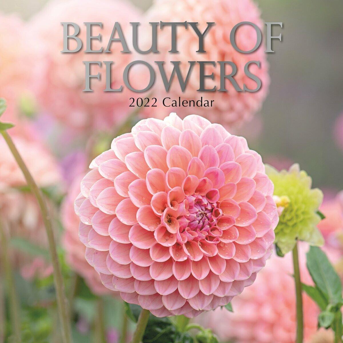 Calendrier De Lavent Beauté 2022 calendrier Beauté des fleurs 2022