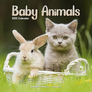 Calendrier 2022 Bebes animaux