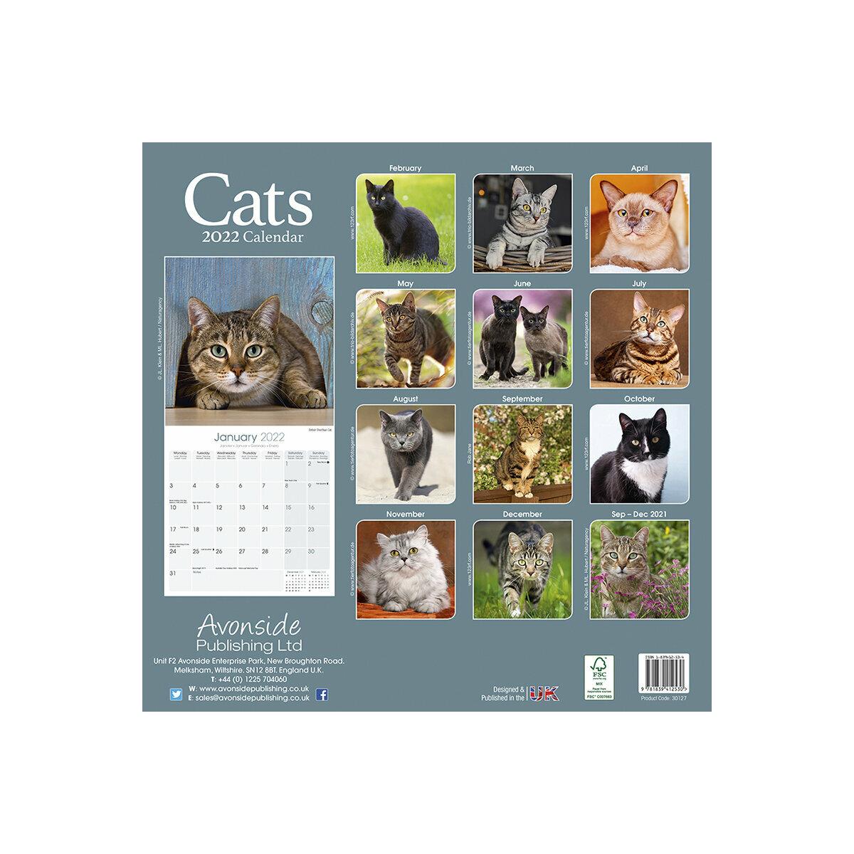 Calendrier 2022 Chat calendrier chats toutes couleurs 2022