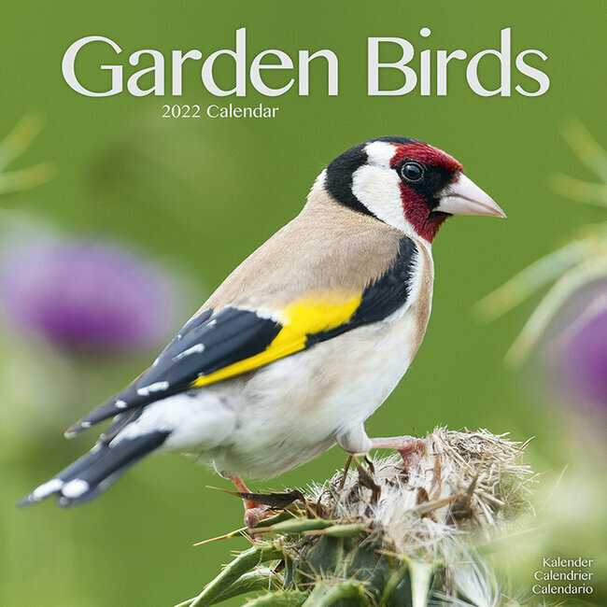 Calendrier Jardin 2022 Calendrier 2022 Oiseaux du jardin